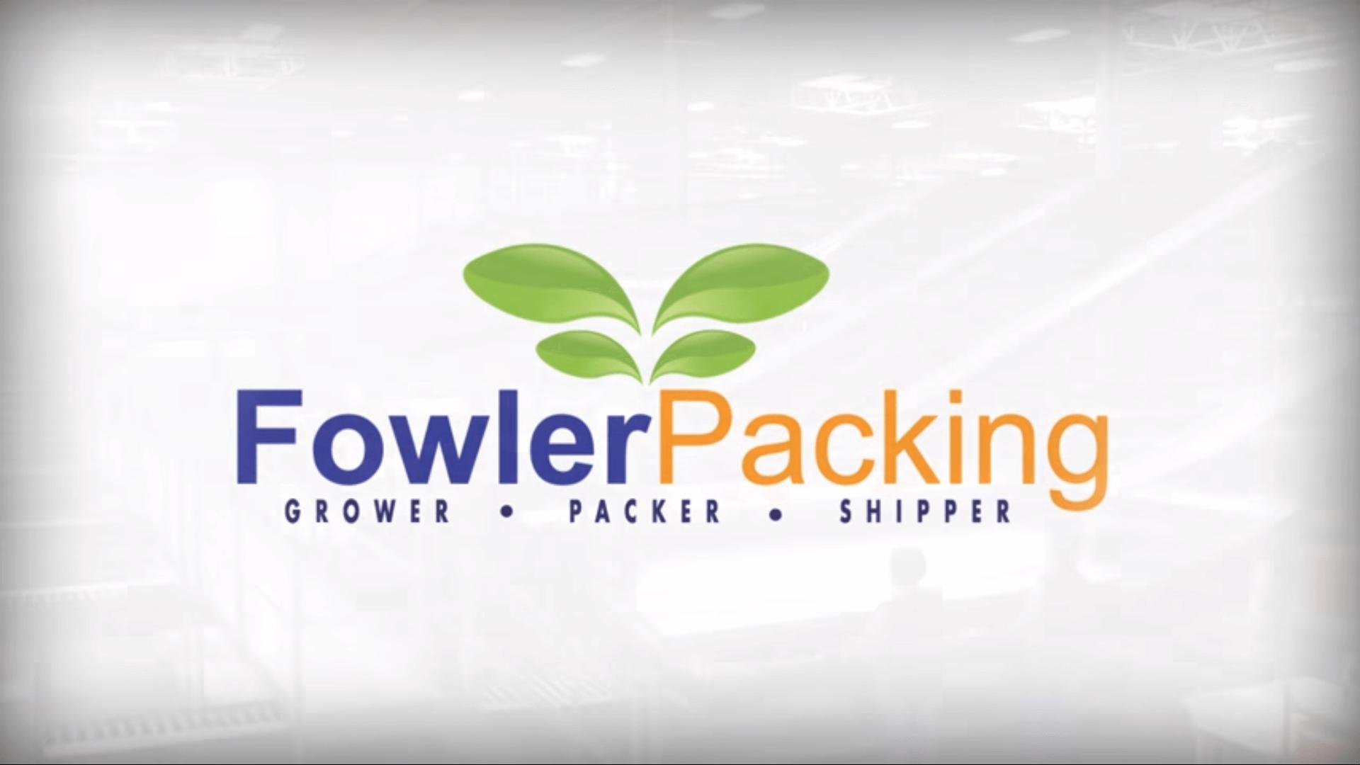 portfolio digital attic fowler packing video screenshot