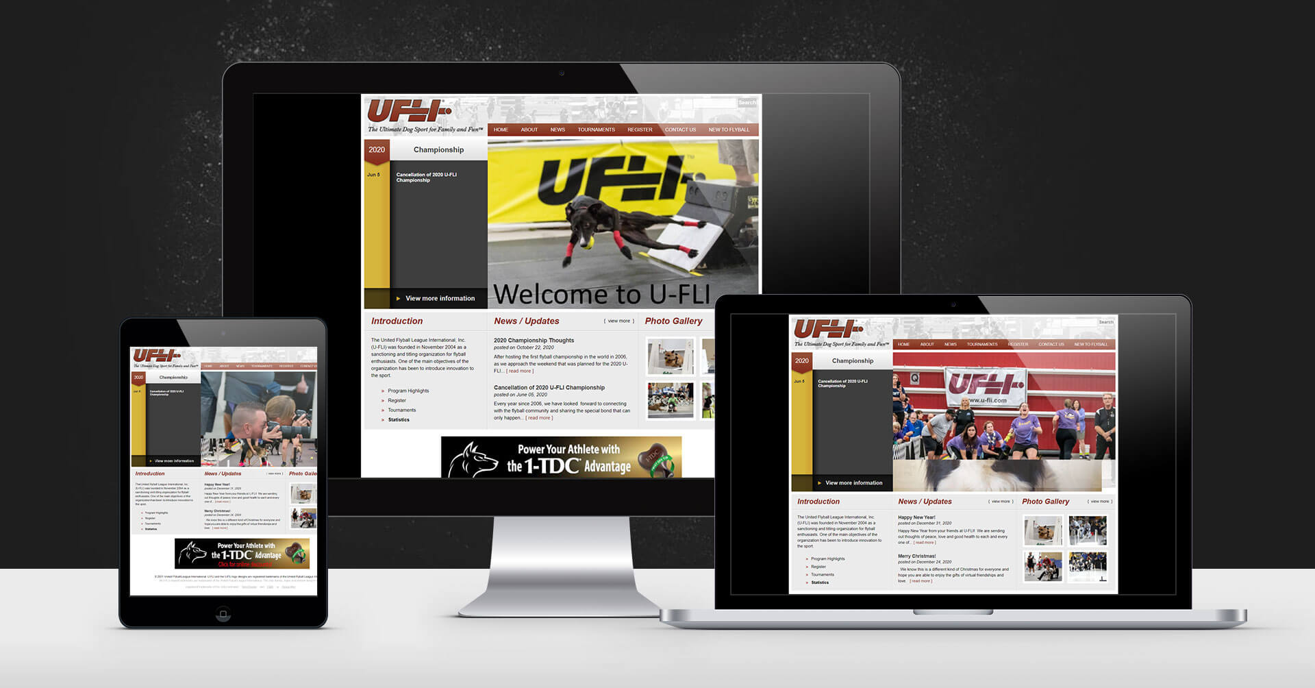 portfolio digital attic united flyball league devices