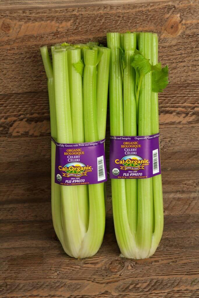 portfolio digital attic cal organic celery